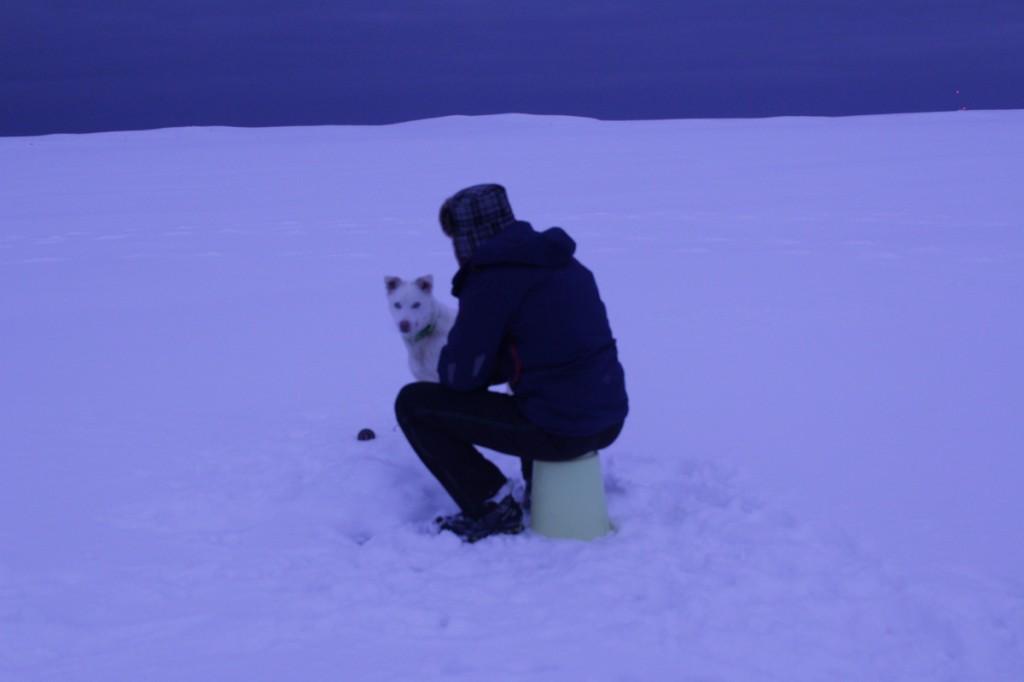 Mikael og Nanuk på Laksvatnet.