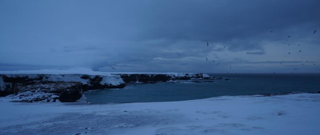 Kapp Dunér. Det vestligste punktet på Bjørnøya.