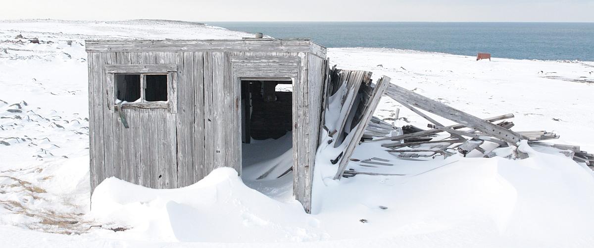 Stallen til Bjørnøy-Blakka